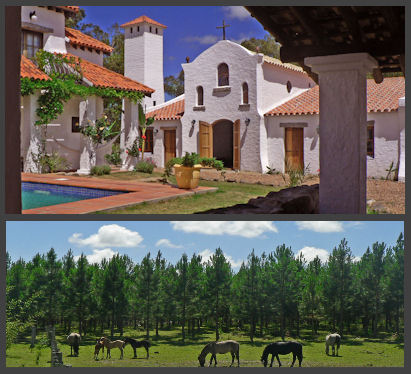 sale forest plantation estancia