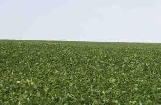 farmland for sale uruguay Paysandu