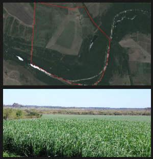 farmland Salto