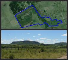 offer cattle ranch Lavalleja