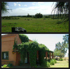 farm/campo w.casco antiguo