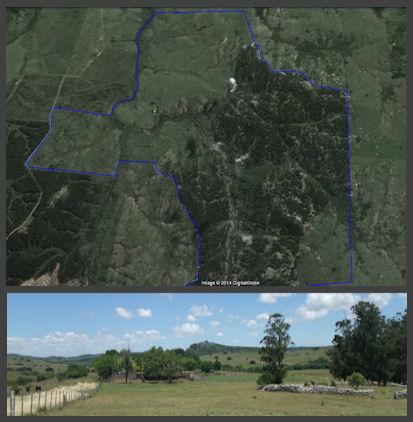 farm campo Rocha hillside