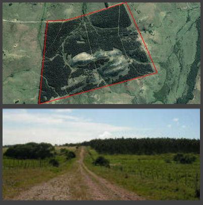 farmland arial u290