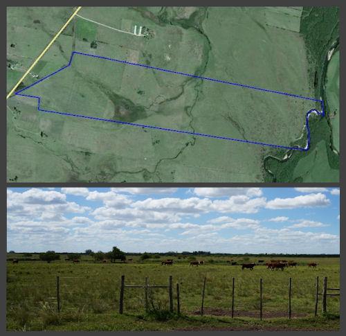 farmland offer Lavelleja Uruguay image u306