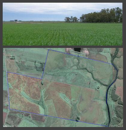 farmland pic u313